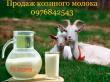КОЗЯЧЕ МОЛОКО від елітних порід кіз