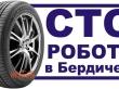 ПРАЦІВНИКИ на СТО в Бердичеві