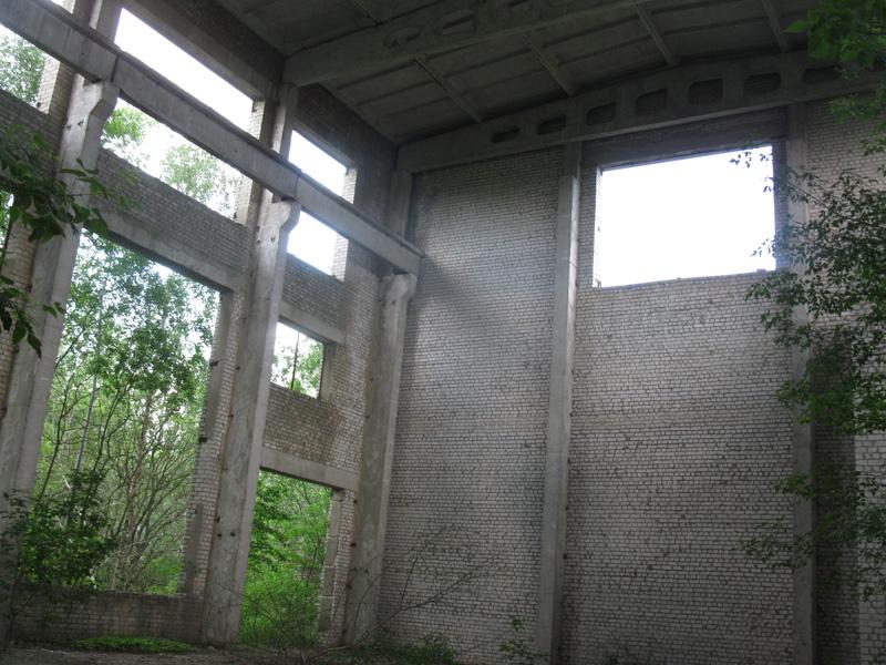 IMG 6913