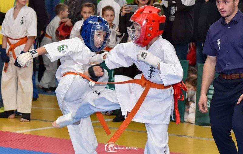 kubok karate1