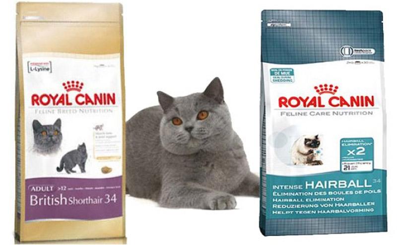 Роял корм для кошек цена