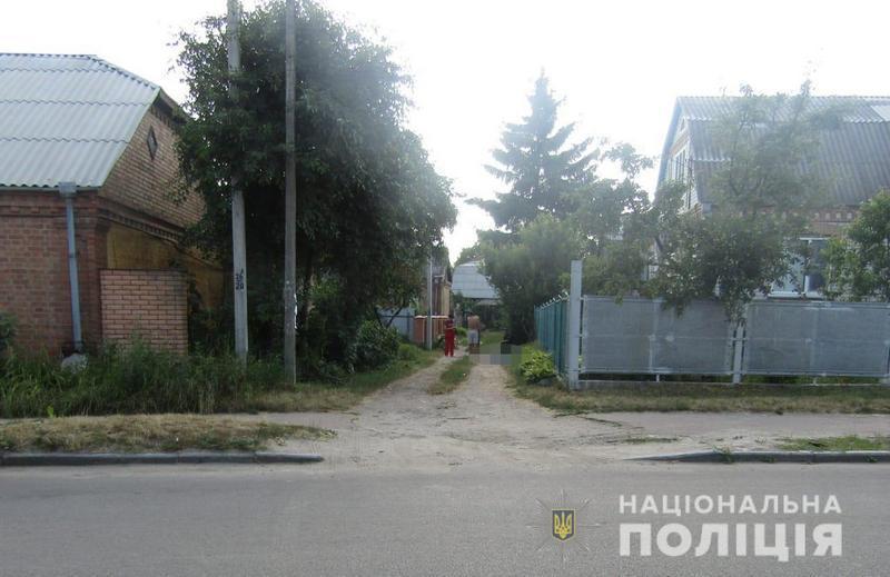 Chudnivskaya 1