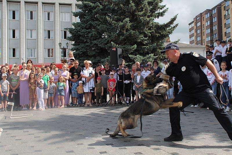 policia.ploshcha33