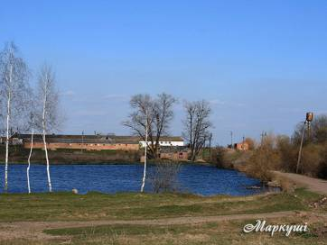 В Бердичівському районі знайшли та описали 181 водний об'єкт, що далі?